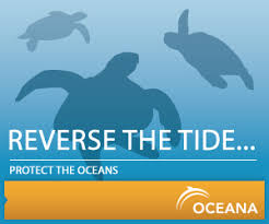 Reverse the Tide: Protect the Oceans